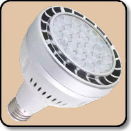 200W PAR30 Warm White LED Bulb