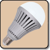 A21 100W LED Bulb Cool White